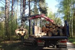 transport drewna olsztyn